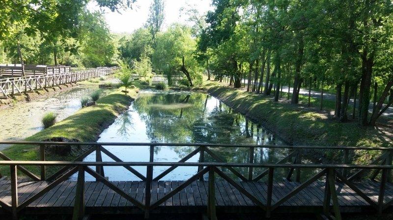 Percorso-naturalistico-allacquario-di-Ariis